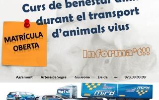 BENESTAR ANIMAL TRANSPORT